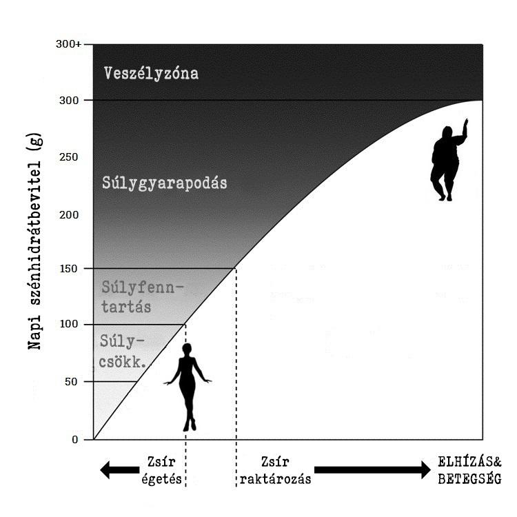 Szénhidrát diagram