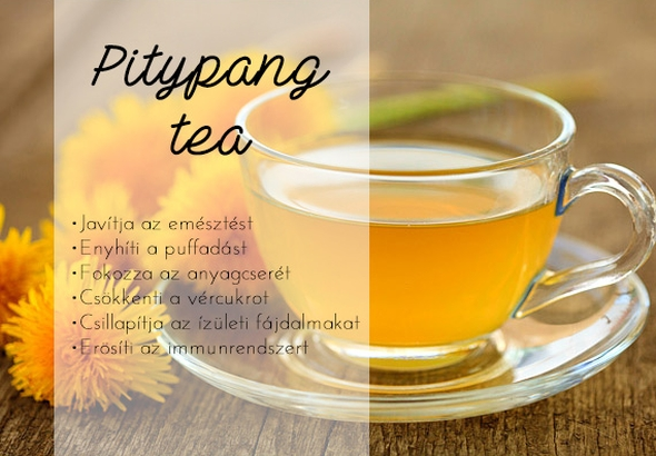 Gyermekláncfű tea, pitypang tea