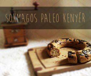 Sokmagos-paleo-kenyer